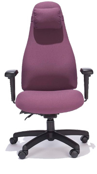 ESP High Back Task Chair with Pillow